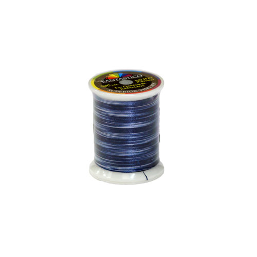 Fantastico Variegated Quilting Thread #5019