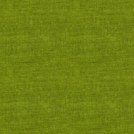 Peppered Cotton- Green Tea by Studio E. E-108 Peppered Green Tea 22X. 703081211838. Available at Quilted Joy.com.
