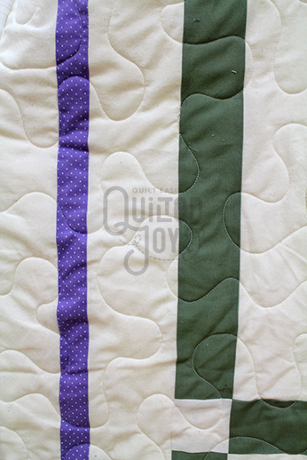 Kaye's Vintage Dresden Quilt after quilting by Quilted Joy